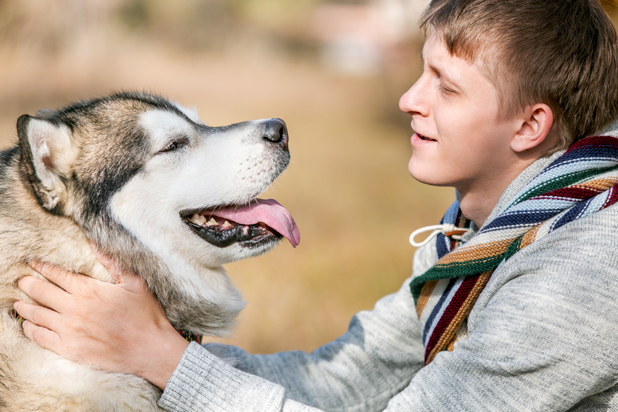 Bach Flower Essences for Canine Socialization and Sociability
