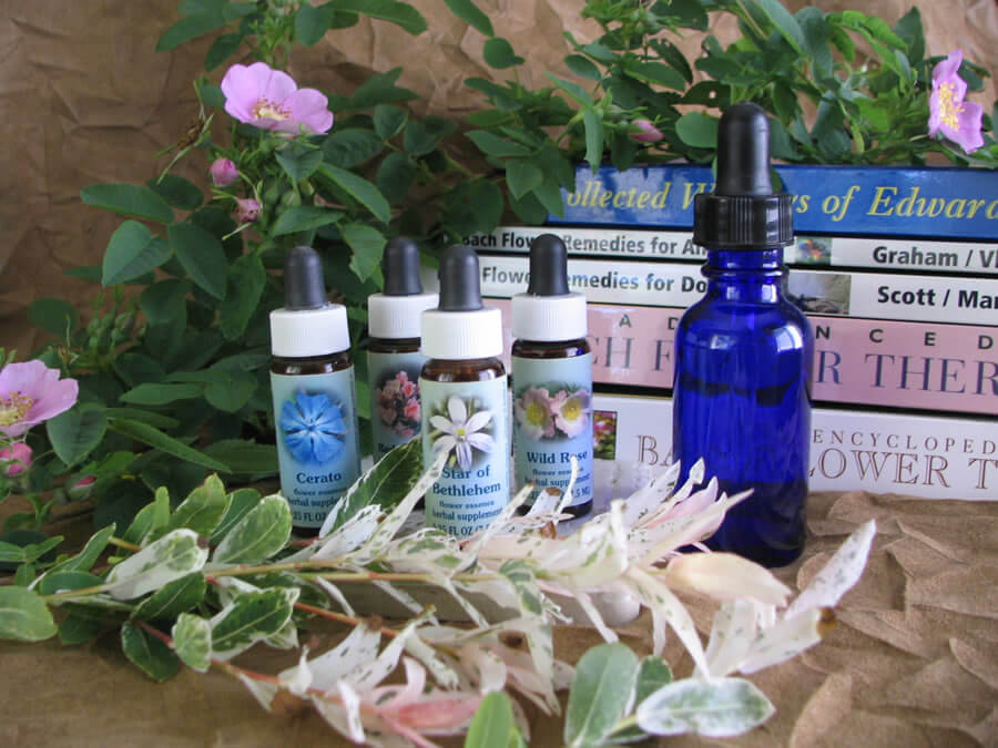 OCD in dogs - natural flower remedies