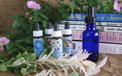 Reactive Remedies in Flower Essence Therapy | Aldaron Essences